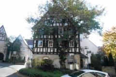 Steinheim Stadtführung 020